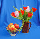Apples and tulips. Eating apples in a colorful bowl beside a brown jug of mauve and red Spring tulips on a blue background Stock Photos