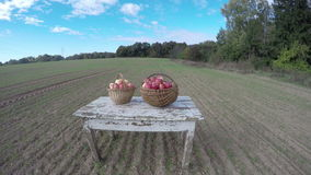 Apples in two wicker baskets on white wooden table ,timelapse 4K stock footage