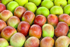 Apples variety Royalty Free Stock Image