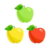 Apples. Vector Stock Photography