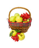 Apples and viburnum in basket Stock Photos