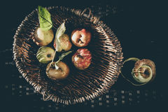 Apples vintage feeling. Apples in a basket, bleached look, autumn feeling, on an old withered metal white chair Stock Images