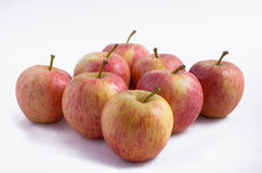 Apples White Royalty Free Stock Photos
