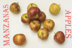 Apples. On white background,  in Spanish and English Stock Photo