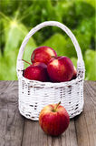 Apples in a white wicker basket. On a wooden table  in the garden Royalty Free Stock Photography