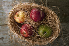 Apples. In the wicker basket Stock Images