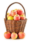 Apples in wicker basket isolated on white Stock Photo