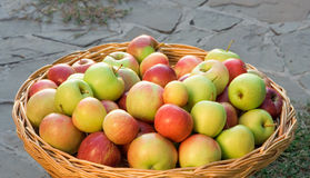 Apples in a wicker basket Royalty Free Stock Photography