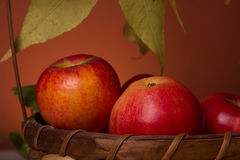Apples in a wicker basket Stock Photos