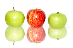 Apples With Reflection On White Stock Photography