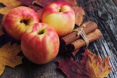 Apples with colored maple leaves and cinnamon sticks on wooden background. Apples on wooden background with colored maple leaves and free space Royalty Free Stock Photos