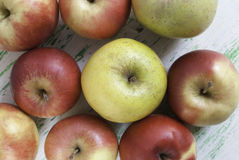 Apples on wooden background. Some apples lying on a wooden background Stock Images