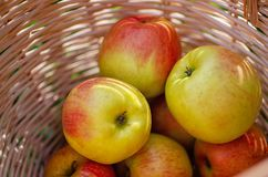 Apples in a wooden basket royalty free stock image