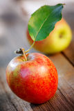 Apples on wooden board Stock Photo