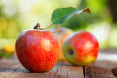 Apples on wooden board Stock Photos