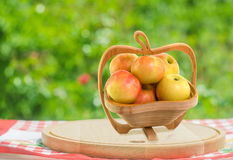 Apples in wooden bowl Royalty Free Stock Photography