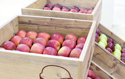 Apples in wooden boxes Stock Photography