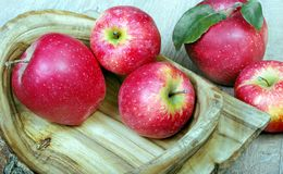 Apples on a wooden dish. Close up royalty free stock images