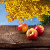 Apples on wooden table over autumn landsape Royalty Free Stock Photo