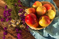 Apples in a woven vase with meadow flowers on a wooden table stock image