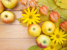 Apples, yellow flowers, physalis lanterns and autumn leaves Stock Photography