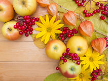Apples, yellow flowers, physalis lanterns, berries and autumn le Stock Image