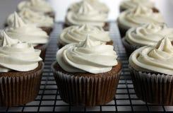 Applesauce Cupcakes Vegan Στοκ Εικόνες