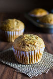 Applesauce Muffins καρότων Στοκ Εικόνες