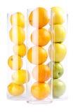 appless πορτοκάλια λεμονιών ομά Στοκ φωτογραφίες με δικαίωμα ελεύθερης χρήσης