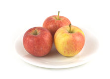 Appless on plate isolated close up Royalty Free Stock Photo