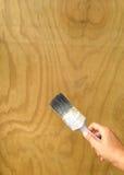 Applicando woodstain al compensato con un vecchio pennello fotografia stock