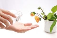 Applicandosi la lozione della pelle alle mani Immagini Stock