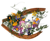 Application bouquet of dry  flowers Royalty Free Stock Image