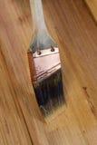 Applicazione della macchia dalla spazzola sul legno naturale del cedro fotografie stock