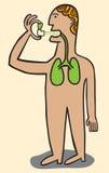 applicerade lungs man medicinspray Arkivfoton