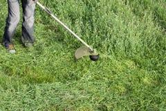 Applikationbeskärare Meja grönt gräs genom att använda en revbeskärare Arkivfoto