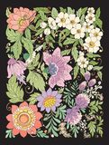 Applique imitation with summer flowers.  Stock line vector   Royalty Free Stock Images