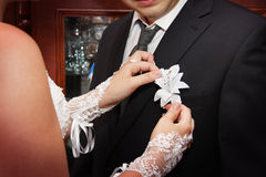 Applying boutonniere. Bride applies boutonniere. close-up detail royalty free stock photography