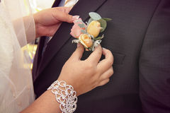 Applying boutonniere Royalty Free Stock Image