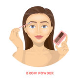 Applying brow powder. Woman does make up Stock Photography