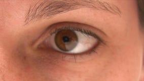 Applying Eyeshadow stock footage