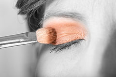 Applying eyeshadow to an eyelid Stock Images