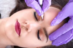 Applying permanent make up on eyebrows in beauty studio. Tattooist making permanent make up with professional tool and purple protective gloves on attractive stock photography