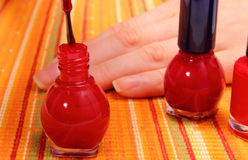 Applying red nail polish, manicured nails of woman Stock Photography