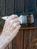 Applying wood preservative on shed door. Stock Photos