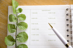 Free Appointment Book Stock Images - 45896104