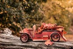 Apport en automne Images stock