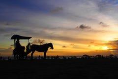 Apprécier le coucher du soleil image libre de droits