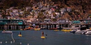 Appréciez Catalina Island CA Etats-Unis photo libre de droits