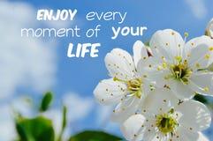 Appréciez chaque moment d'affiche de motivation de citation de la vie d'uour Image stock